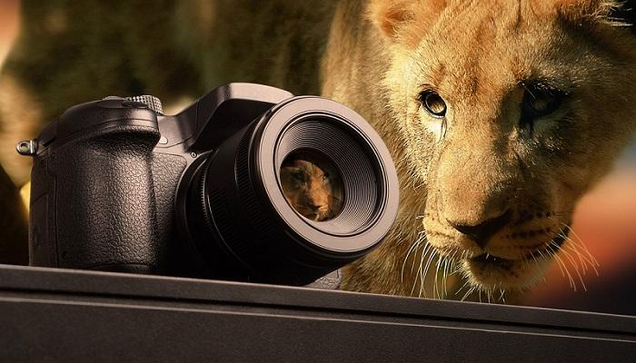 Safari-Adventure